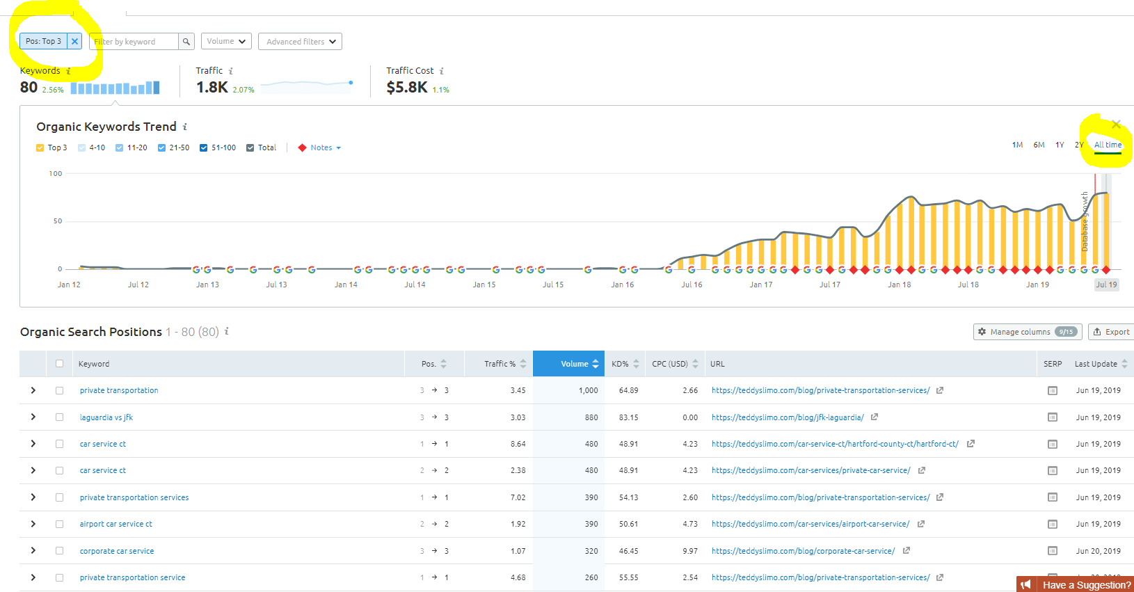 Teddys Keyword Growth - Top 3 Positions in Search