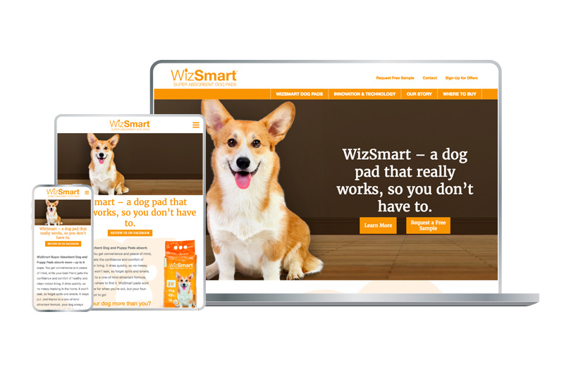 Consumer Product Website Design - WizSmart by Petix
